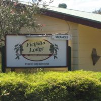 Ficifolia Lodge
